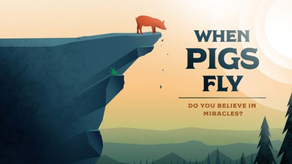 When Pigs Fly Week 1 Image